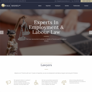 e747ea41bb928f Website Design Portfolio | Media Suite Inc.